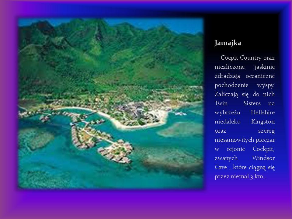Geolodzy są zdania, że Jamajka i sąsiadujące z nią wyspy na Morzu Karaibskim wykształciły się z wypiętrzenia wulkanicznego, które wyrosło z morskich wód miliony lat temu.