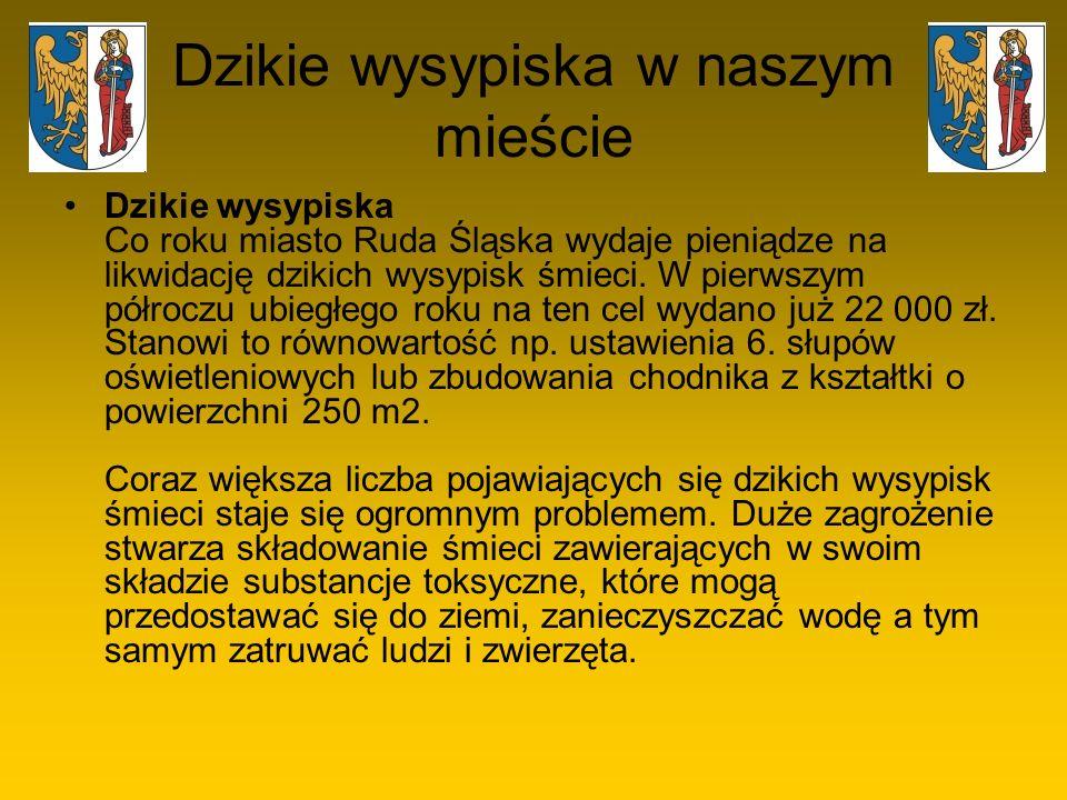 Dzikie wysypiska w naszym mieście Dzikie wysypiska Co roku miasto Ruda Śląska wydaje pieniądze na likwidację dzikich wysypisk śmieci. W pierwszym półr