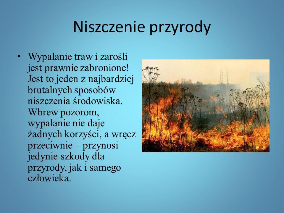 Niszczenie przyrody Wypalanie traw i zarośli jest prawnie zabronione.