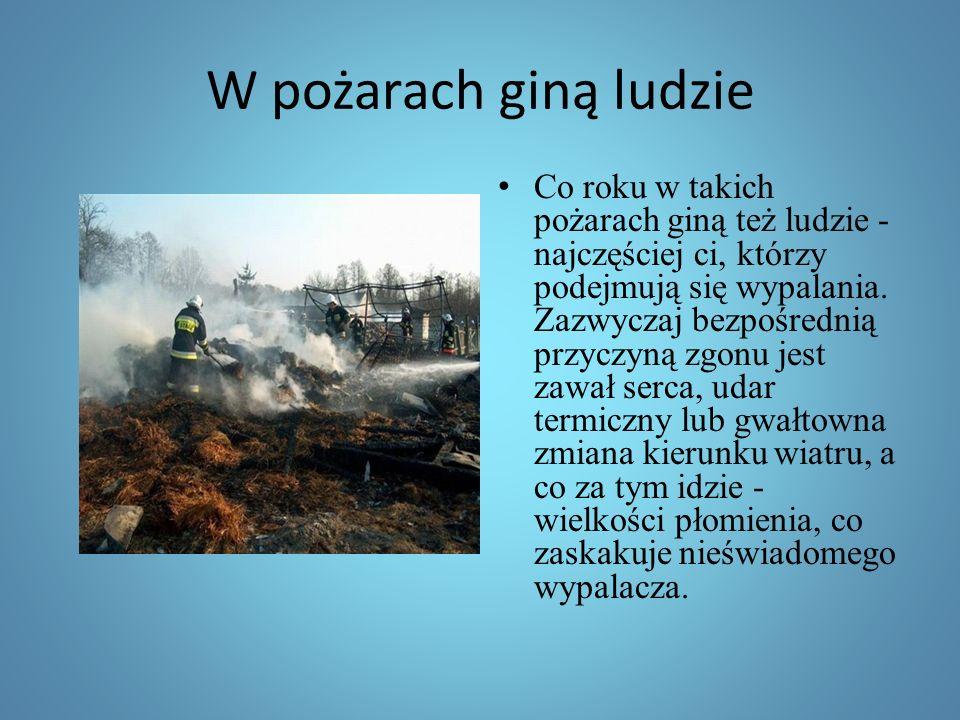 W pożarach giną ludzie Co roku w takich pożarach giną też ludzie - najczęściej ci, którzy podejmują się wypalania.