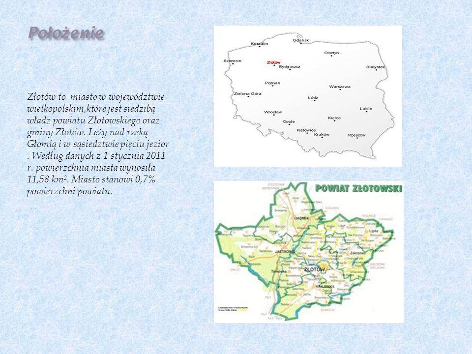 W Złotowie występują duże sieci sklepów występujących w całej Polsce i nie tylko.Z branży spożywczej są to Tesco,Biedronka,Netto,Żabka, Lidl.