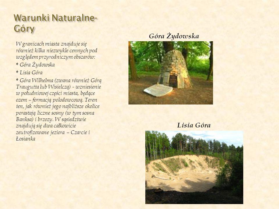 Warunki Naturalne- Parki W Złotowie znajduje się ponadto 5 parków miejskich: - Park Miejski - Park im.
