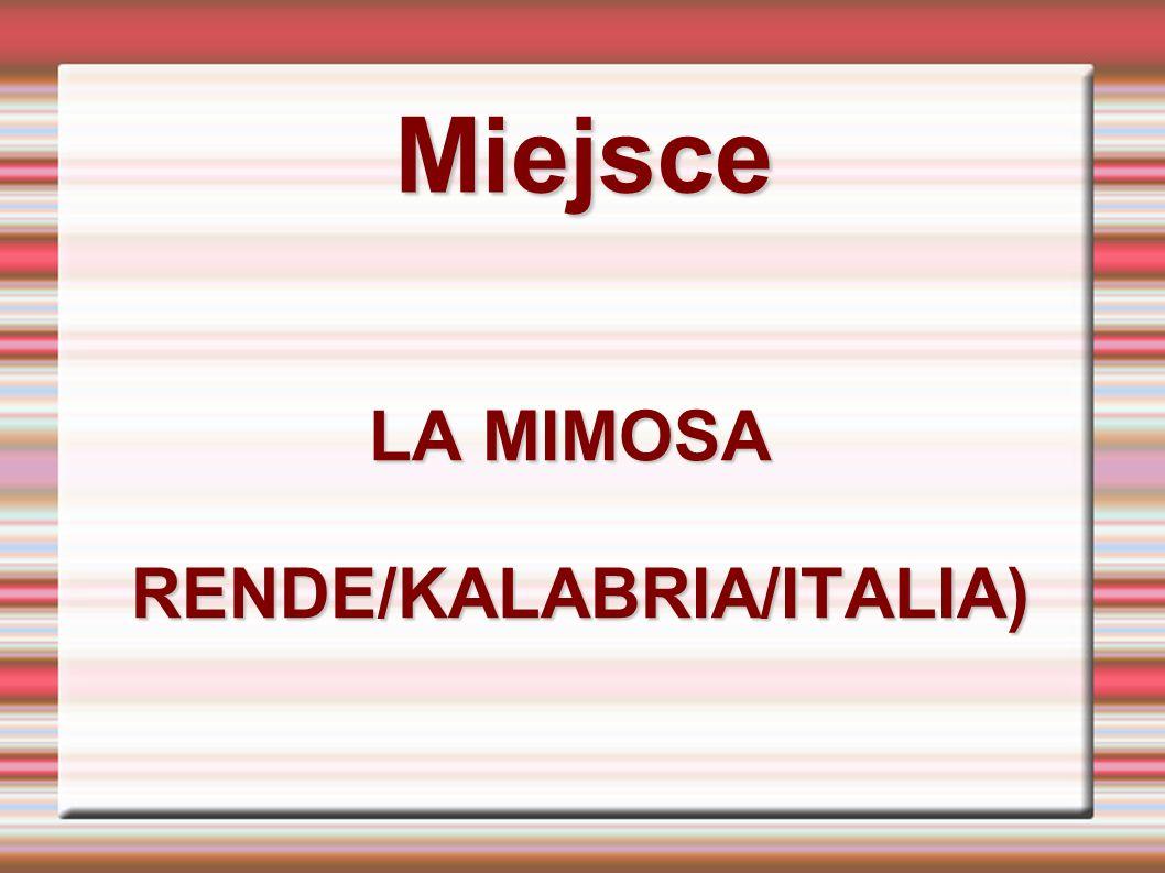 Miejsce LA MIMOSA RENDE/KALABRIA/ITALIA) RENDE/KALABRIA/ITALIA)