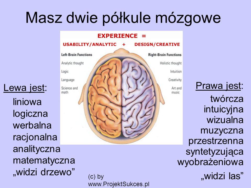 (c) by www.ProjektSukces.pl Masz dwie półkule mózgowe Lewa jest: liniowa logiczna werbalna racjonalna analityczna matematyczna widzi drzewo Prawa jest