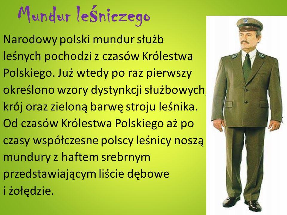 Mundur le ś niczego Narodowy polski mundur służb leśnych pochodzi z czasów Królestwa Polskiego. Już wtedy po raz pierwszy określono wzory dystynkcji s