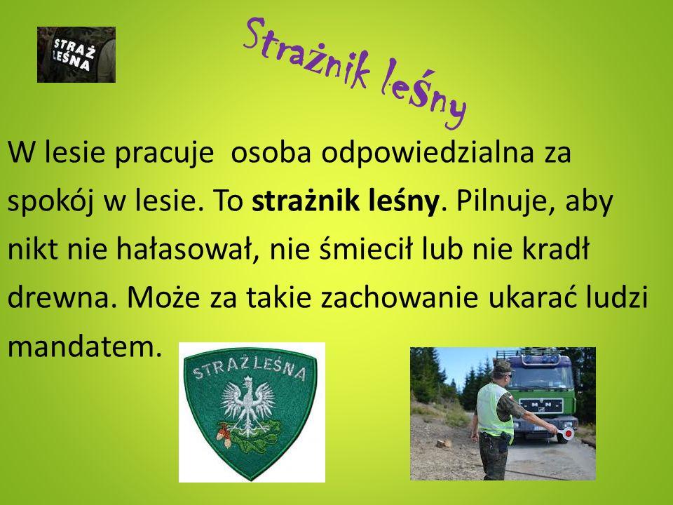 Le ś niczy Leśniczy jest gospodarzem lasu.To osoba, która najlepiej go zna.
