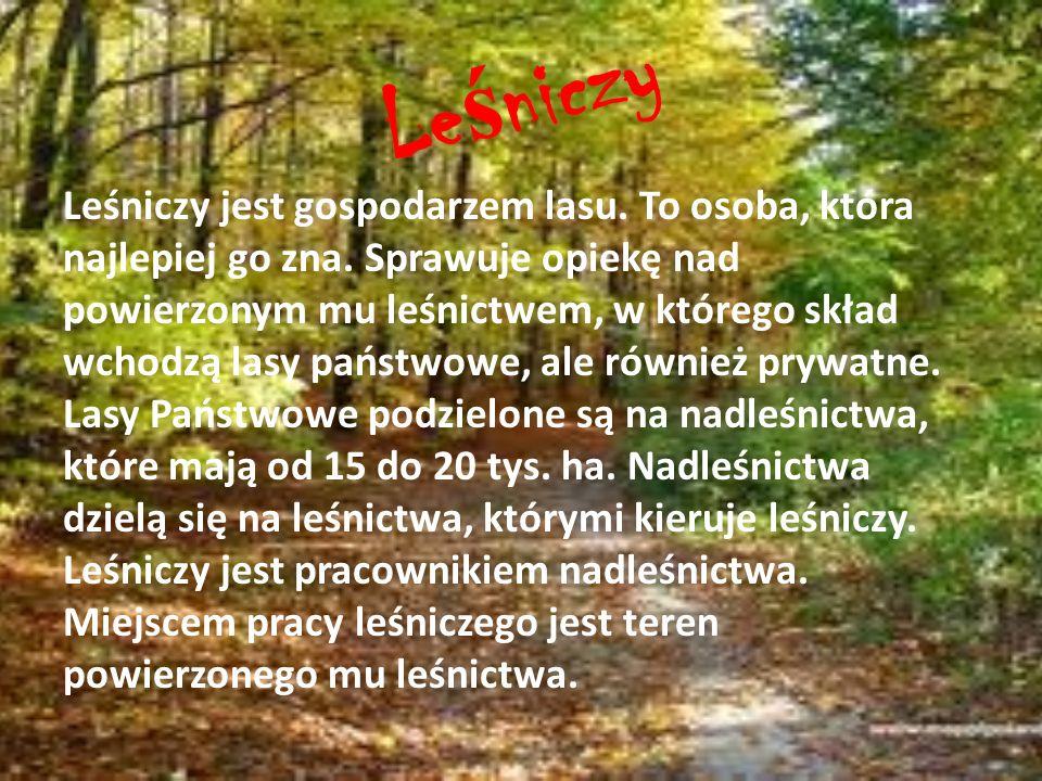 Le ś niczy Leśniczy jest gospodarzem lasu. To osoba, która najlepiej go zna. Sprawuje opiekę nad powierzonym mu leśnictwem, w którego skład wchodzą la