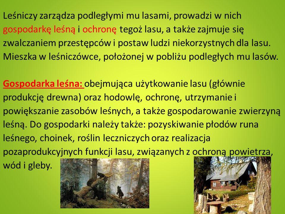 Zadania le ś niczego - leśniczy przez cały rok dokonuje obserwacji stanu zdrowotnego lasu; - aby wiosną posadzić młody las na przygotowanej jesienią powierzchni, leśniczy musi zaplanować, jaki gatunek drzewa ma być posadzony, w jakim miejscu i ile sztuk sadzonek będzie potrzebnych do wysadzenia; - późną jesienią należy dokonać prognozy wystąpienia szkodliwych dla lasu owadów, na podstawie zebranych owadów ustala sie czy w przyszłym roku będzie ich dużo czy mało; - wiosną leśniczy sprawuje nadzór nad sadzeniem lasu;
