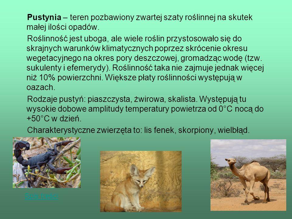 Źródła Wikipedia, Ilustrowany Słownik Szkolny Nauki o Ziemi Biologia 2.