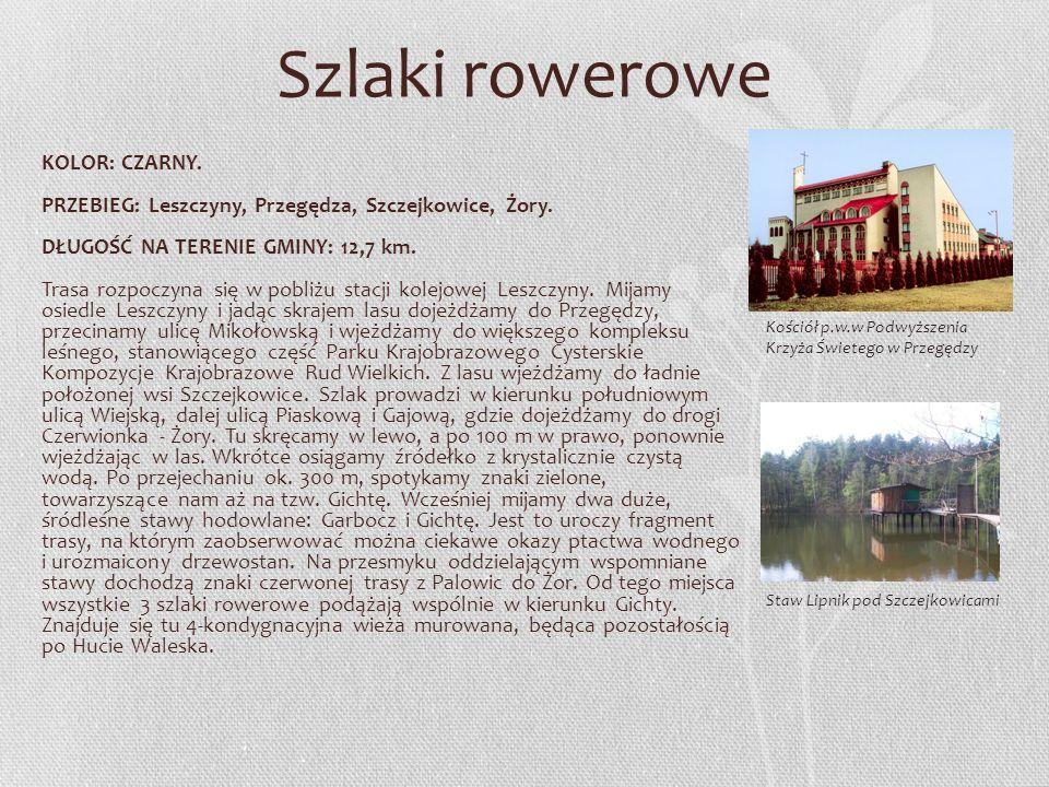 KOLOR: CZARNY. PRZEBIEG: Leszczyny, Przegędza, Szczejkowice, Żory. DŁUGOŚĆ NA TERENIE GMINY: 12,7 km. Trasa rozpoczyna się w pobliżu stacji kolejowej