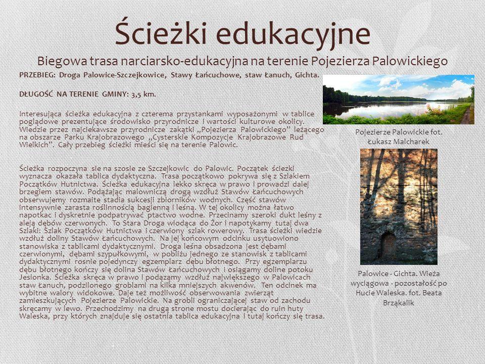 Ścieżki edukacyjne Biegowa trasa narciarsko-edukacyjna na terenie Pojezierza Palowickiego PRZEBIEG: Droga Palowice-Szczejkowice, Stawy Łańcuchowe, sta