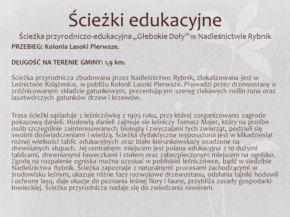 Ścieżki edukacyjne Ścieżka przyrodniczo-edukacyjna Głebokie Doły w Nadleśnictwie Rybnik PRZEBIEG: Kolonia Lasoki Pierwsze. DŁUGOŚĆ NA TERENIE GMINY: 1