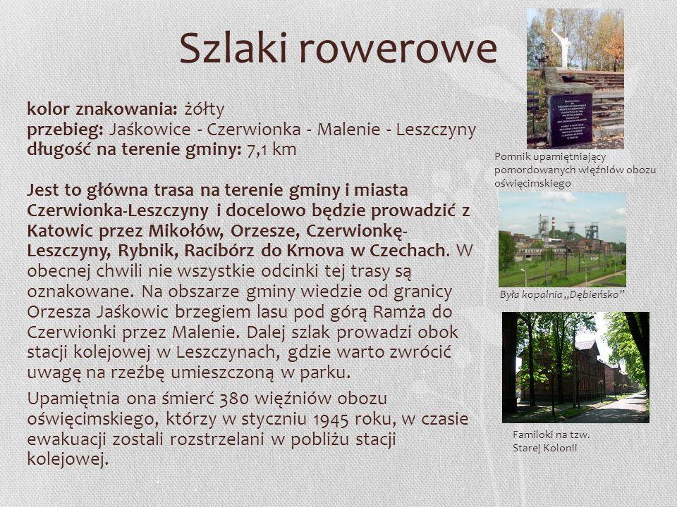 Szlaki rowerowe kolor znakowania: żółty przebieg: Jaśkowice - Czerwionka - Malenie - Leszczyny długość na terenie gminy: 7,1 km Jest to główna trasa n
