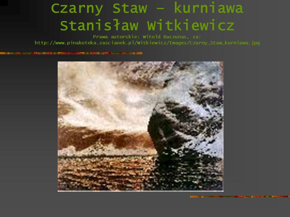 Czarny Staw – kurniawa Stanisław Witkiewicz Prawa autorskie: Witold Raczunas, za: http://www.pinakoteka.zascianek.pl/Witkiewicz/Images/Czarny_Staw_kur