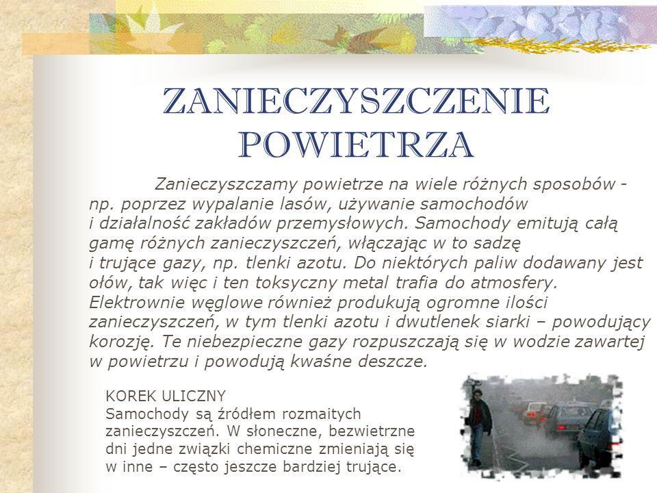 Projekt i opracowanie prezentacji Katarzyna Koszuta klasa I c gimnazjum