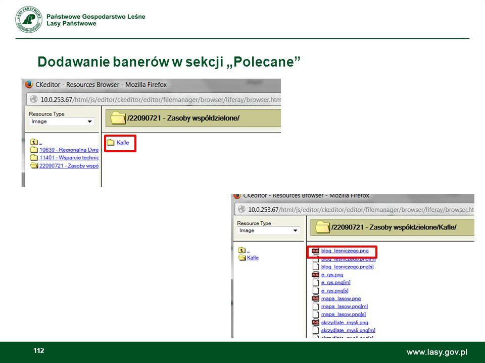 113 Dodawanie banerów w sekcji Polecane W oknie właściwości obrazka ustawiamy wielkość obrazka na 220x200px lub 460x200px.