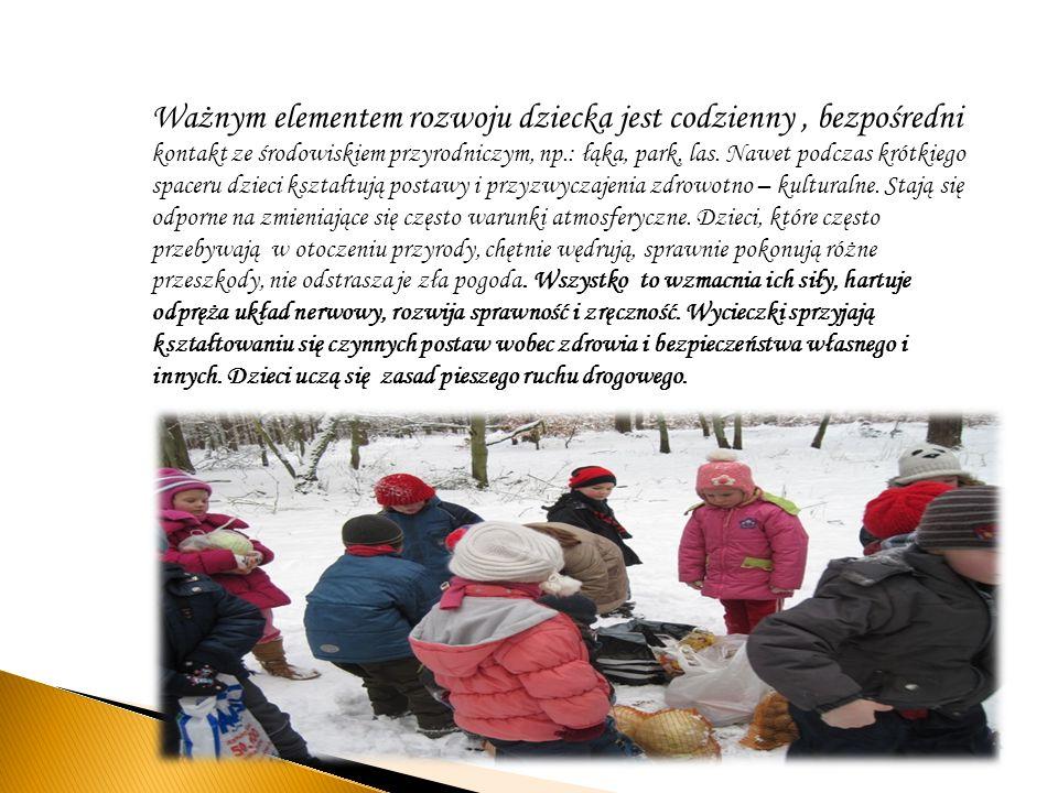 Ważnym elementem rozwoju dziecka jest codzienny, bezpośredni kontakt ze środowiskiem przyrodniczym, np.: łąka, park, las. Nawet podczas krótkiego spac