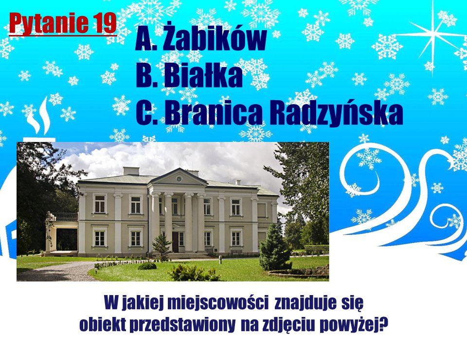 Pytanie 19 W jakiej miejscowości znajduje się obiekt przedstawiony na zdjęciu powyżej? A. Żabików B. Białka C. Branica Radzyńska