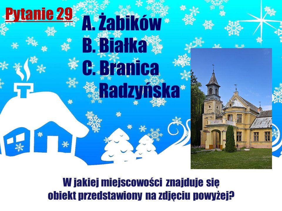 Pytanie 29 A. Żabików B. Białka C. Branica Radzyńska W jakiej miejscowości znajduje się obiekt przedstawiony na zdjęciu powyżej?