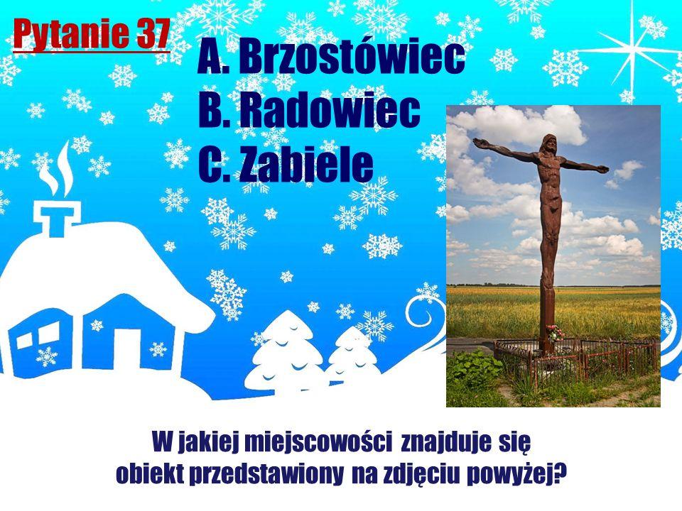 Pytanie 37 A. Brzostówiec B. Radowiec C. Zabiele W jakiej miejscowości znajduje się obiekt przedstawiony na zdjęciu powyżej?