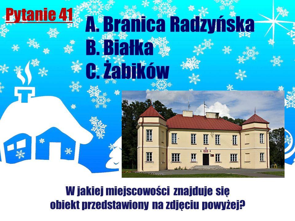 Pytanie 41 A. Branica Radzyńska B. Białka C. Żabików W jakiej miejscowości znajduje się obiekt przedstawiony na zdjęciu powyżej?