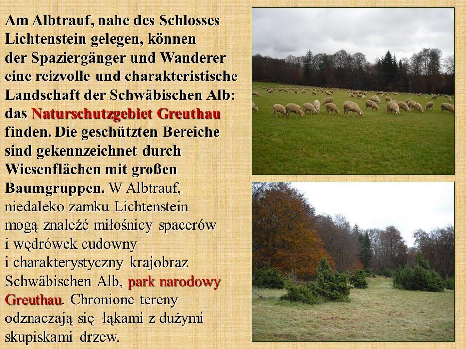Am Albtrauf, nahe des Schlosses Lichtenstein gelegen, können der Spaziergänger und Wanderer eine reizvolle und charakteristische Landschaft der Schwäb