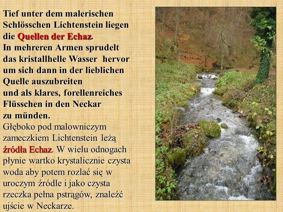 Tief unter dem malerischen Schlösschen Lichtenstein liegen die Quellen der Echaz. In mehreren Armen sprudelt das kristallhelle Wasser hervor um sich d