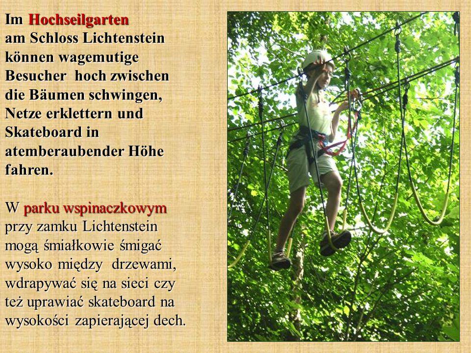 Im Hochseilgarten am Schloss Lichtenstein können wagemutige Besucher hoch zwischen die Bäumen schwingen, Netze erklettern und Skateboard in atemberaub