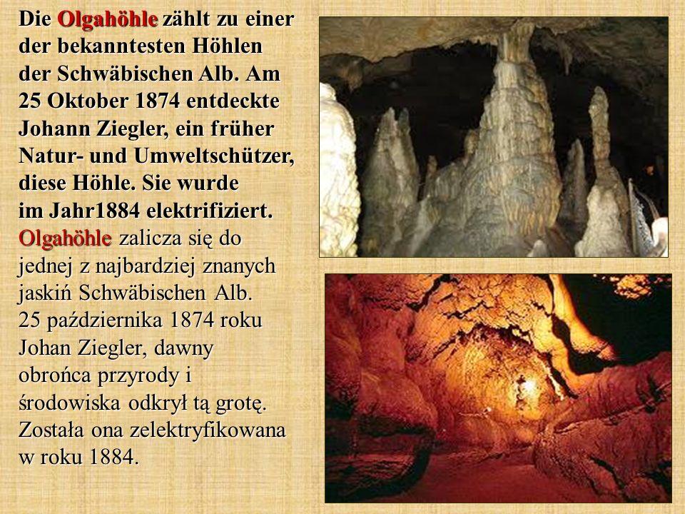 Die Olgahöhle zählt zu einer der bekanntesten Höhlen der Schwäbischen Alb. Am 25 Oktober 1874 entdeckte Johann Ziegler, ein früher Natur- und Umweltsc