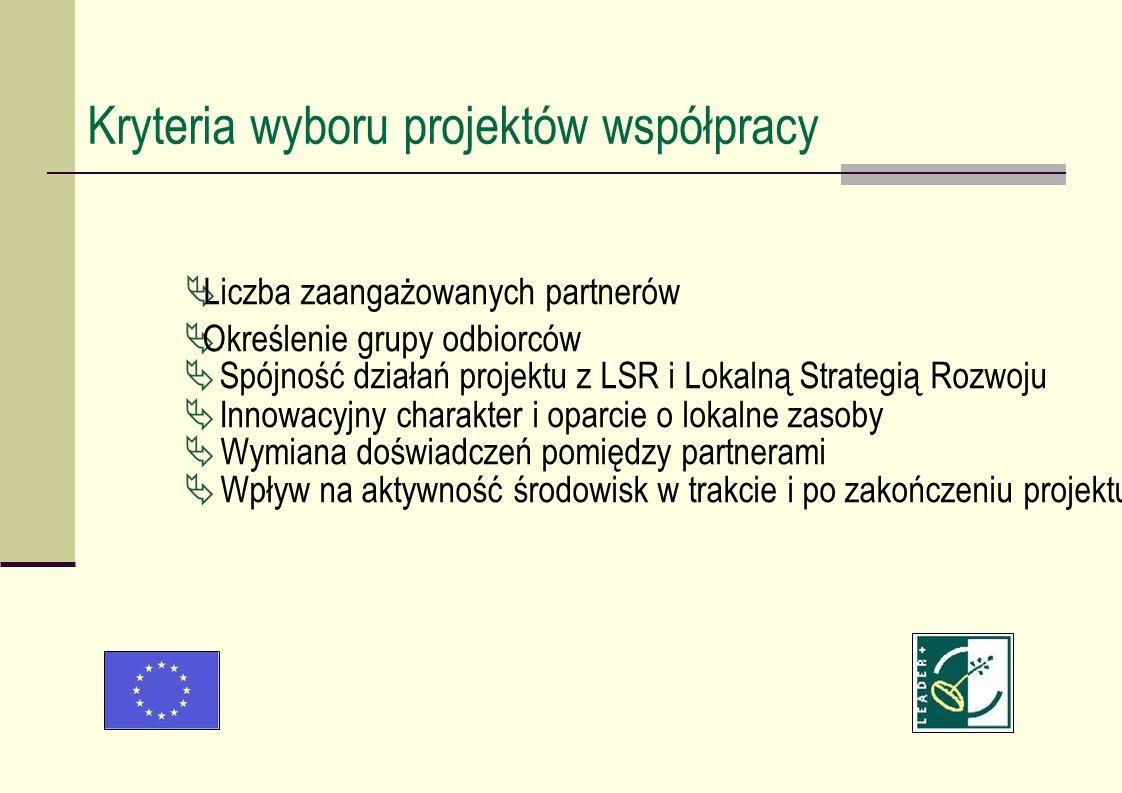 Liczba zaangażowanych partnerów Określenie grupy odbiorców Spójność działań projektu z LSR i Lokalną Strategią Rozwoju Innowacyjny charakter i oparcie