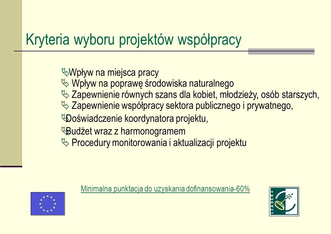Wpływ na miejsca pracy Wpływ na poprawę środowiska naturalnego Zapewnienie równych szans dla kobiet, młodzieży, osób starszych, Zapewnienie współpracy