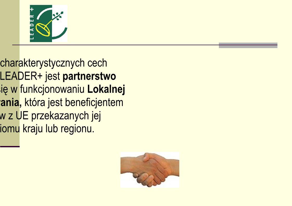 Jedną z charakterystycznych cech Programu LEADER+ jest partnerstwo wyrażające się w funkcjonowaniu Lokalnej Grupy Działania, która jest beneficjentem