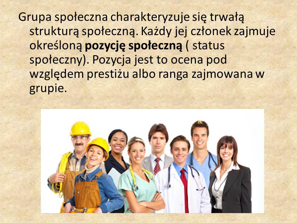 Grupa społeczna charakteryzuje się trwałą strukturą społeczną. Każdy jej członek zajmuje określoną pozycję społeczną ( status społeczny). Pozycja jest