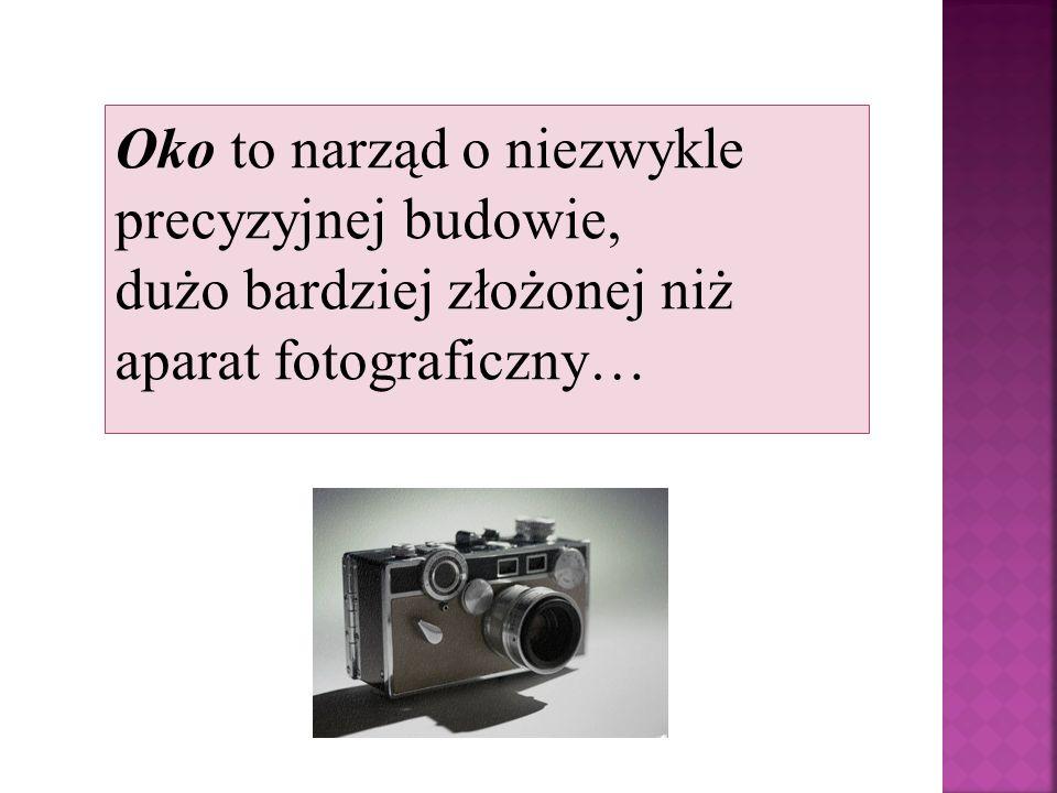 Oko to narząd o niezwykle precyzyjnej budowie, dużo bardziej złożonej niż aparat fotograficzny…