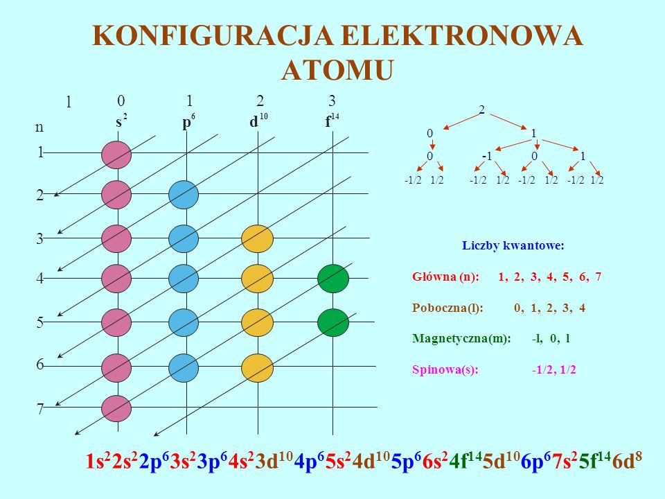 KONFIGURACJA ELEKTRONOWA ATOMU Liczby kwantowe: Główna (n): 1, 2, 3, 4, 5, 6, 7 Poboczna(l): 0, 1, 2, 3, 4 Magnetyczna(m): -l, 0, l Spinowa(s): -1/2,