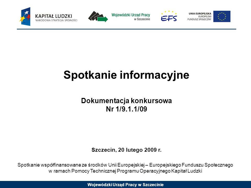 Wojewódzki Urząd Pracy w Szczecinie Spotkanie informacyjne Dokumentacja konkursowa Nr 1/9.1.1/09 Szczecin, 20 lutego 2009 r.