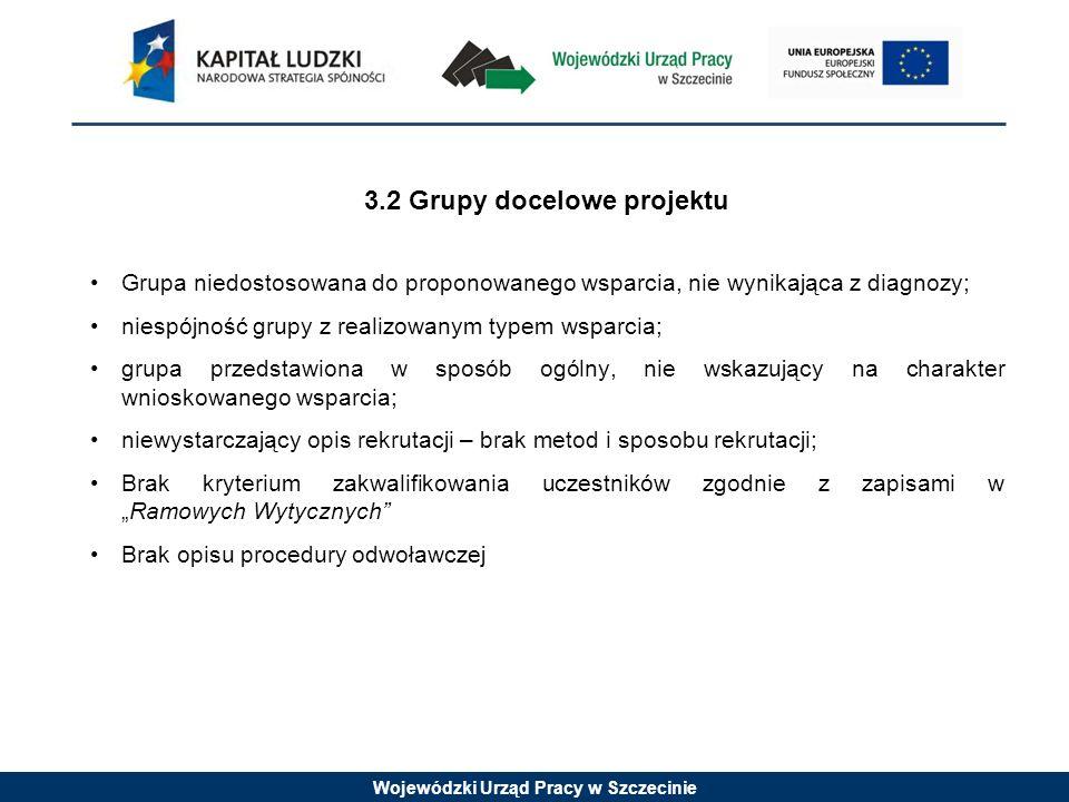Wojewódzki Urząd Pracy w Szczecinie 3.2 Grupy docelowe projektu Grupa niedostosowana do proponowanego wsparcia, nie wynikająca z diagnozy; niespójność