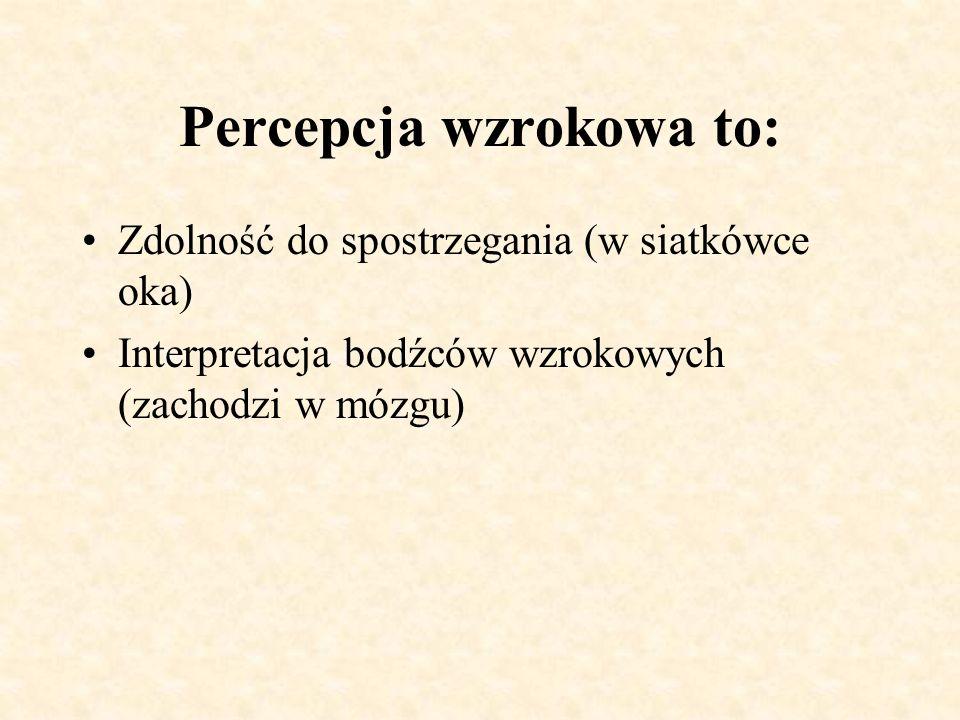 Percepcja wzrokowa to: Zdolność do spostrzegania (w siatkówce oka) Interpretacja bodźców wzrokowych (zachodzi w mózgu)
