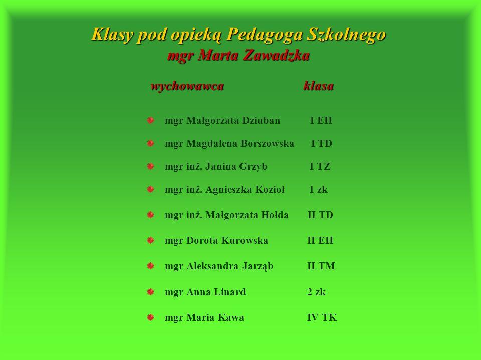 Pedagog Szkolny e-mail – pedagog.zseg.tarnow@interia.pl