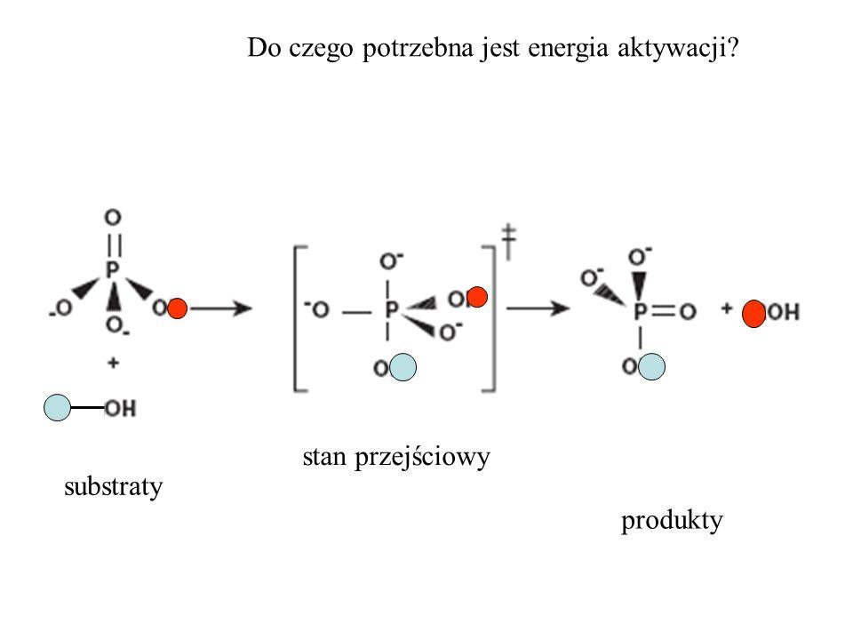 stan przejściowy substraty produkty Do czego potrzebna jest energia aktywacji?