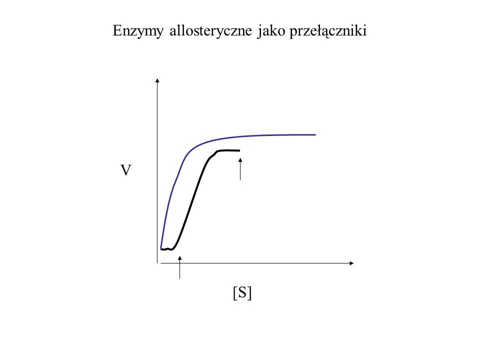 V Enzymy allosteryczne jako przełączniki