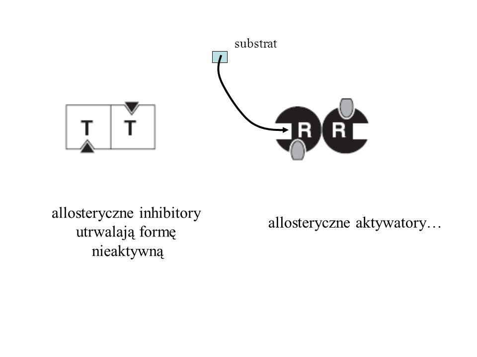 allosteryczne inhibitory utrwalają formę nieaktywną allosteryczne aktywatory… substrat