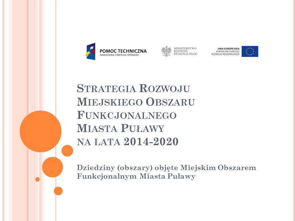 P LAN PREZENTACJI Perspektywa finansowania inwestycji publicznych w latach 2014-2020 Charakterystyka projektu utworzenia MOF; Zasięg Miejskiego Obszaru Funkcjonalnego Miasta Puławy; Charakterystyka powiązań funkcjonalnych łączących Miasto Puławy z gminami ościennymi; Wizja rozwoju MOF i narzędzia do jej wdrażania; Pytania i wnioski.