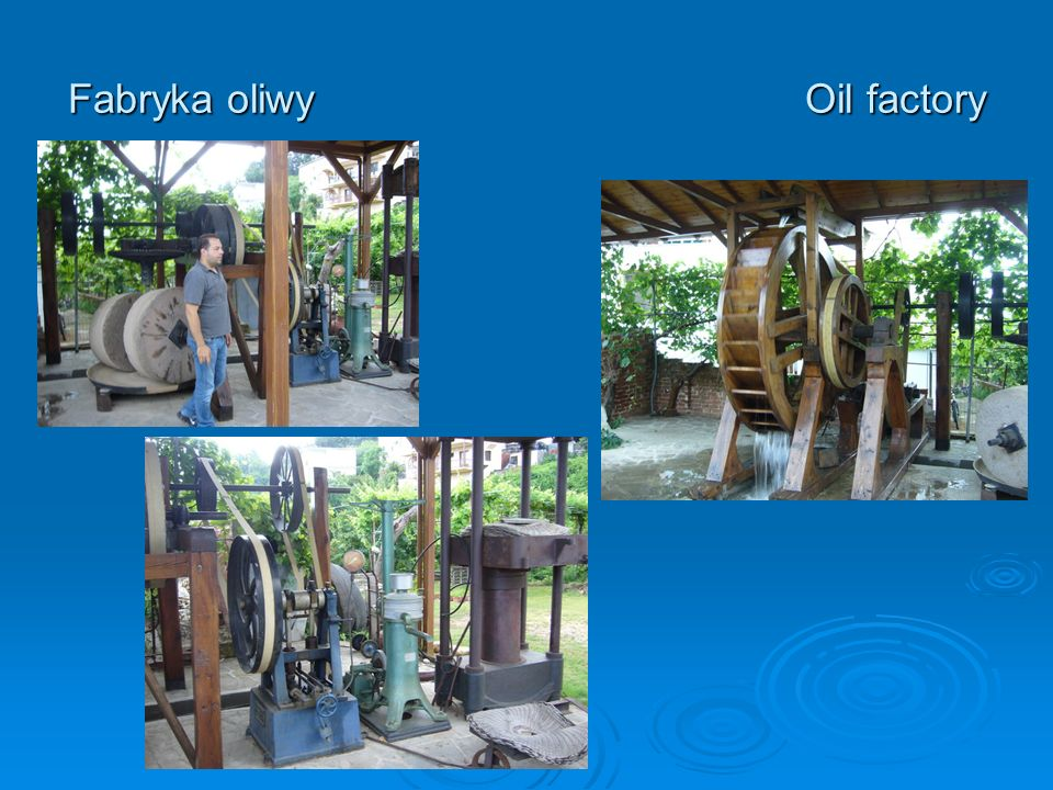 Fabryka oliwyOil factory