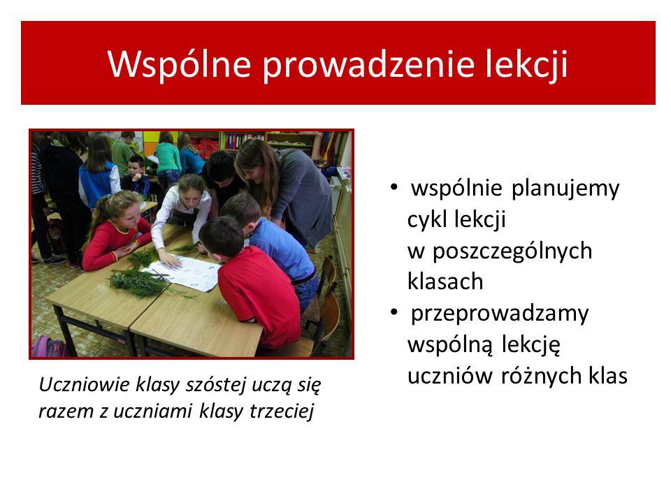 Wspólne prowadzenie lekcji wspólnie planujemy cykl lekcji w poszczególnych klasach przeprowadzamy wspólną lekcję uczniów różnych klas Uczniowie klasy