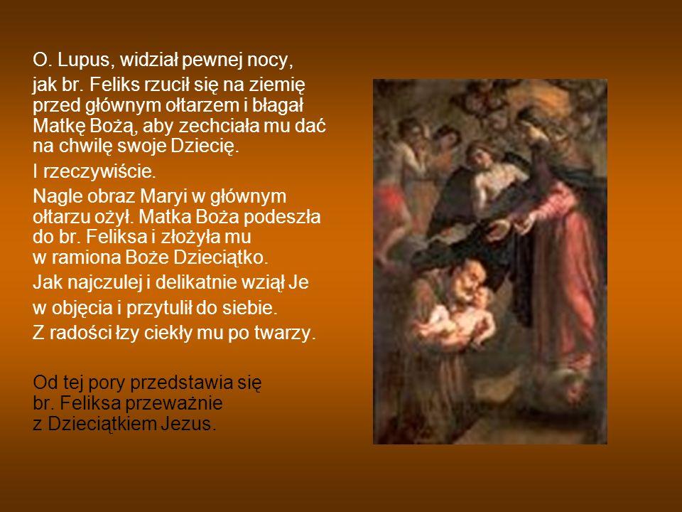 O. Lupus, widział pewnej nocy, jak br. Feliks rzucił się na ziemię przed głównym ołtarzem i błagał Matkę Bożą, aby zechciała mu dać na chwilę swoje Dz