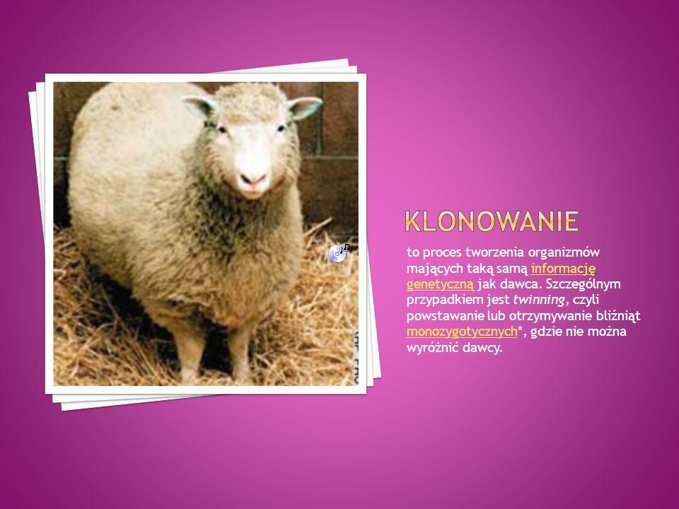 Klonowanie organizmów oznacza procedurę otrzymywania organizmów o takiej samej informacji genetycznej, z reguły poprzez procedurę transferu jądra* z komórki somatycznej *do komórki jajowej* pozbawionej uprzednio jądra.