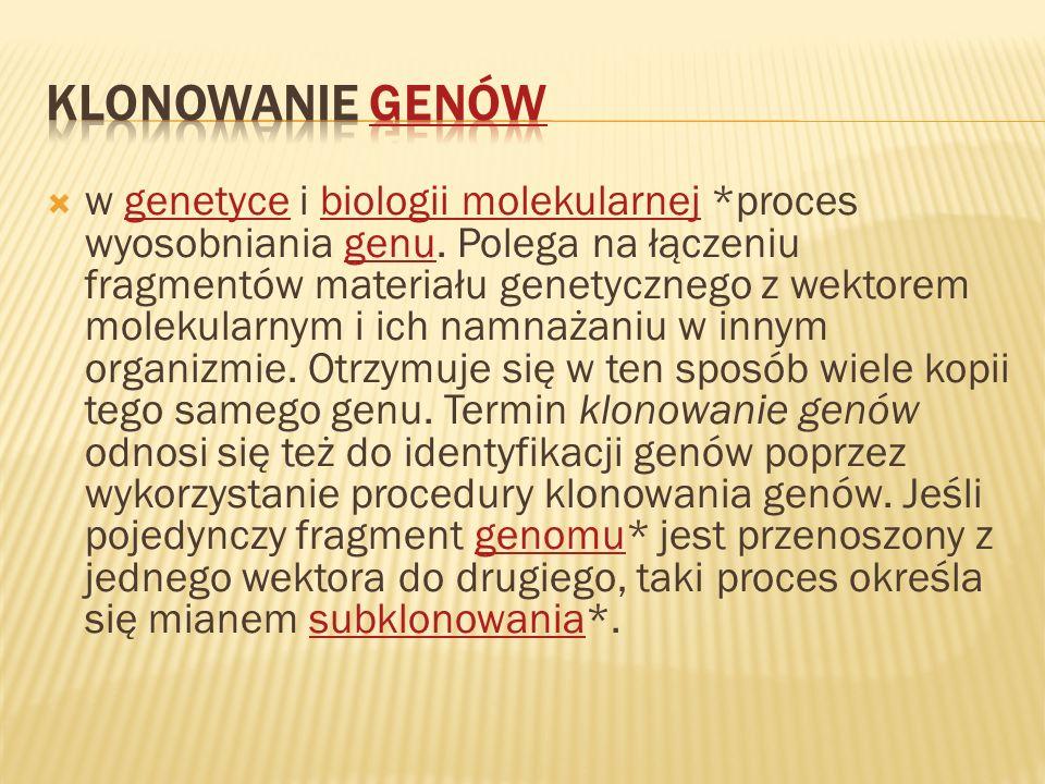 w genetyce i biologii molekularnej *proces wyosobniania genu. Polega na łączeniu fragmentów materiału genetycznego z wektorem molekularnym i ich namna