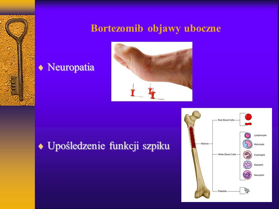 Bortezomib objawy uboczne Neuropatia Neuropatia Upośledzenie funkcji szpiku Upośledzenie funkcji szpiku