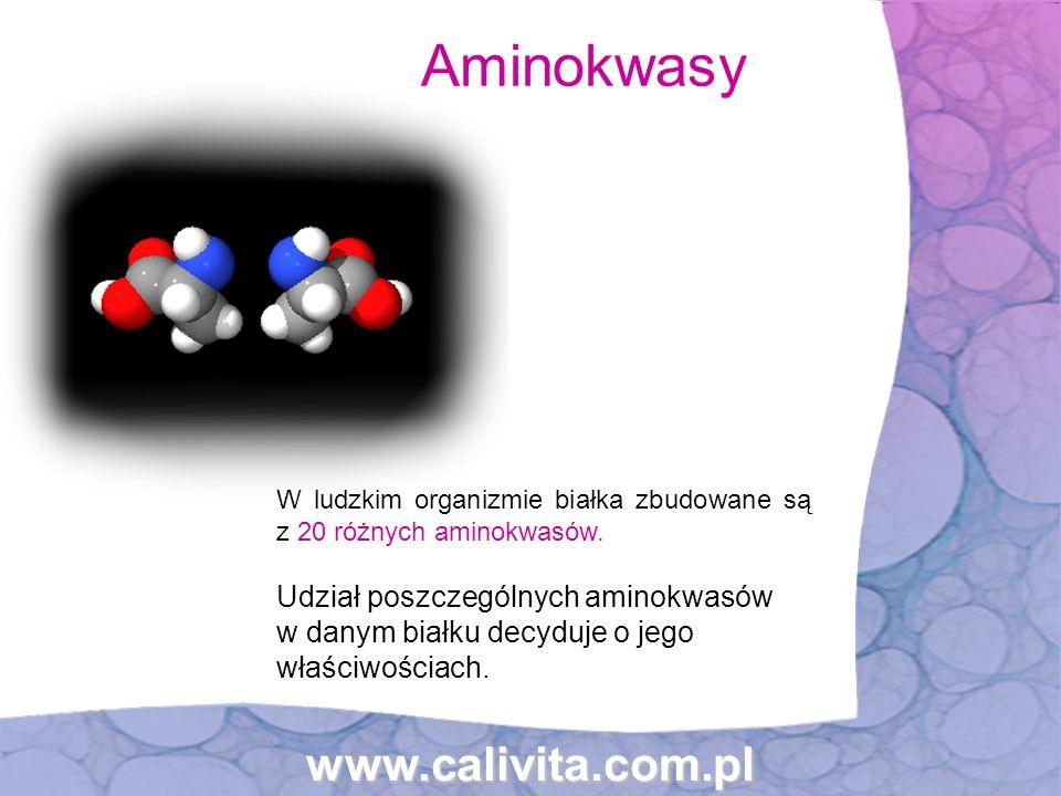 www.calivita.com.pl Aminokwasy W ludzkim organizmie białka zbudowane są z 20 różnych aminokwasów. Udział poszczególnych aminokwasów w danym białku dec